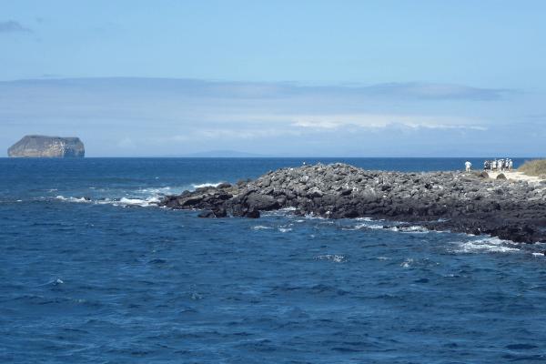 Isla Seymour Norte